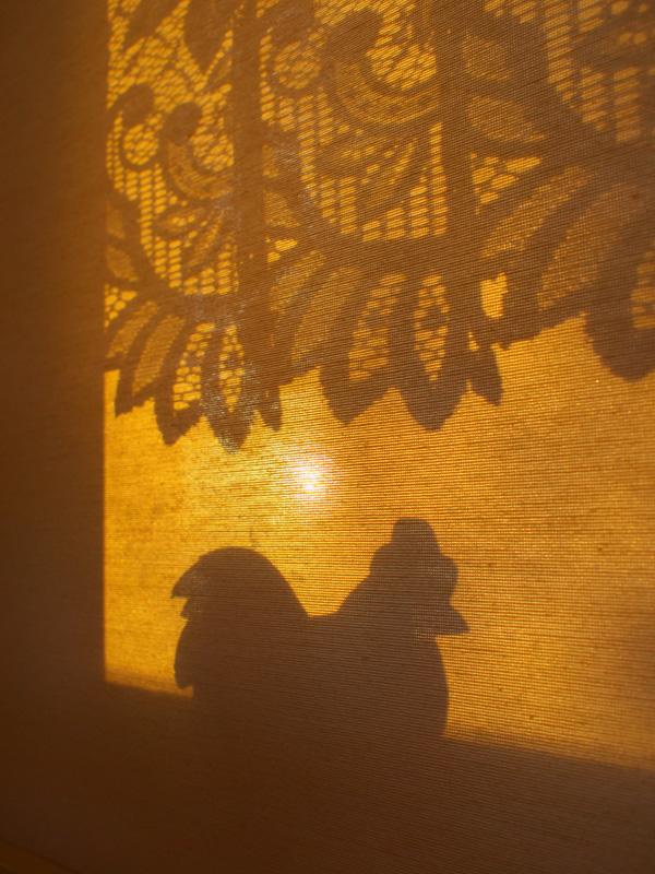 窓に朝の光が~