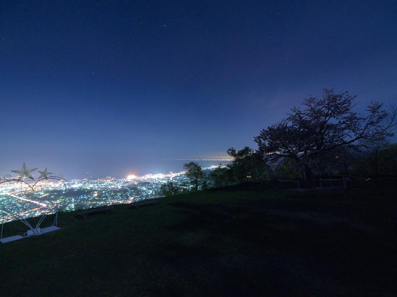 100523_tengusakura_001